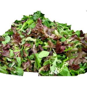 Solata Farms - Sol Spring Mix 5 oz
